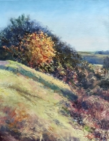 "<h5><em>Muir Wood Sunset</em> <strong>•</strong> 16"" x 20"" oil on canvas <strong>•</strong> SOLD</h5>"